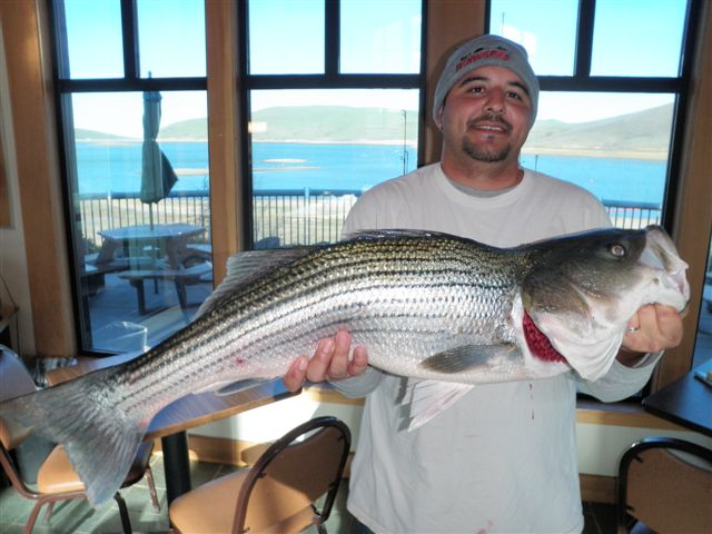 nice striper caught at los vaqueros reservoir