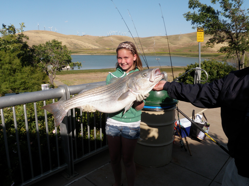 fishing report los vaqueros reservoir 5 30 2011