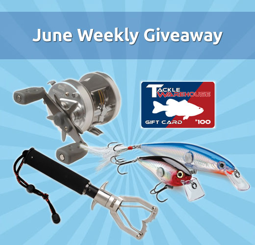 june weekly fishing gear giveaway